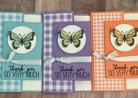 Trio of Butterflies 🦋