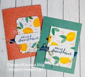 Simply Citrus Card kit